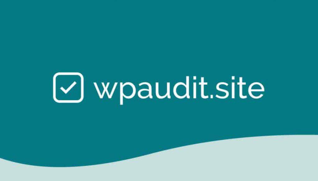 wpaudit.site