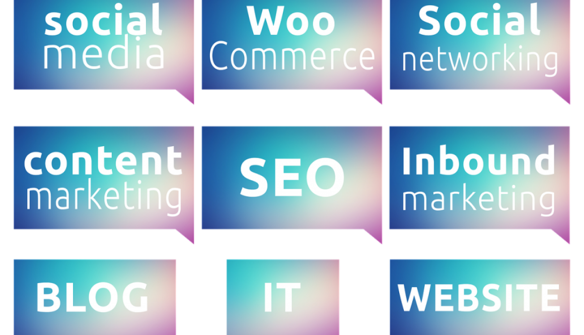 The Wild Web: How SEO Can Draw In, Engage and Retain Consumers for Brand Name Structure